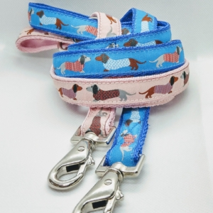 blue or pink Dachshund leads for your dog