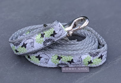 butterfly lead for your dog