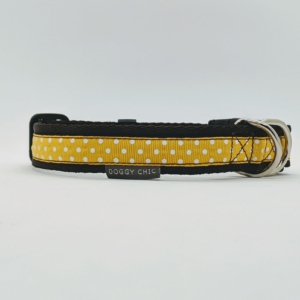 yellow polka dot collar for your dog