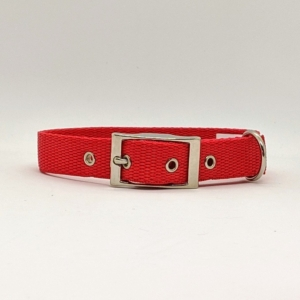 polyprop collar red for your dog