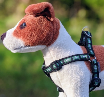 doggy chic devon flag harness