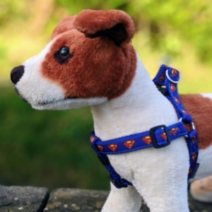 doggy chic superman step in dog harness