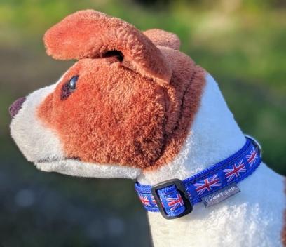 doggy chic union jack dog collar