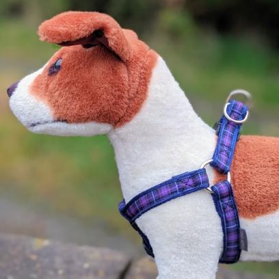 doggy chic pride of scotland modern dog harness