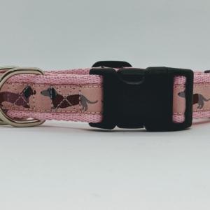 dachshund collar