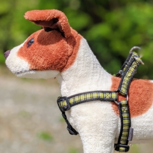 tartan dog harness