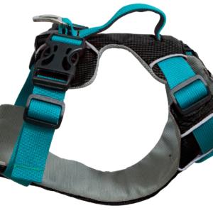 car dog harness