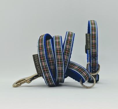 tartan collar for your small dog