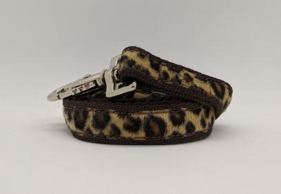 leopard dog lead