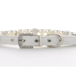 bling dog collar and lead
