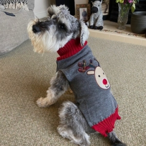 FredWinston in his Rudolph Jumper