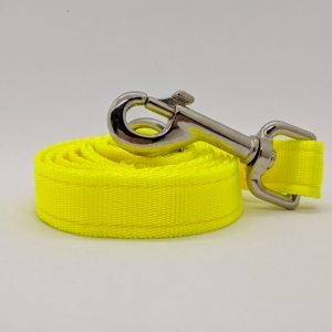 Safety Dog Lead
