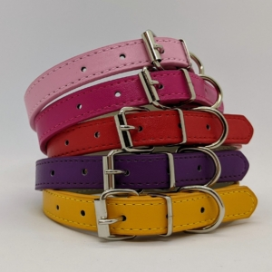 Vegan Leather Dog Collars and Leads