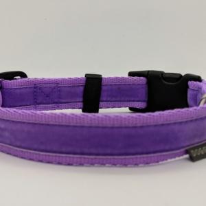 Lilac Dog Collar
