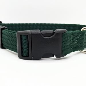 green Dog Collar
