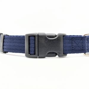 Blue Dog Collar